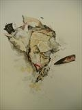 Fragments of the Human Heart, No 7. 2010 by sarah burgess, Drawing, Ink and watercolour on paper